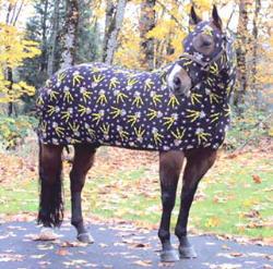 Horse Blanket