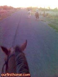 Cell phone on horseback
