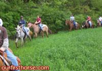 Long trail ride