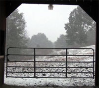 Snow through the barn